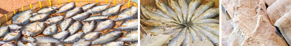 Malaysia Finest Quality of Kuantan Salted Fish & Seafood Exporter